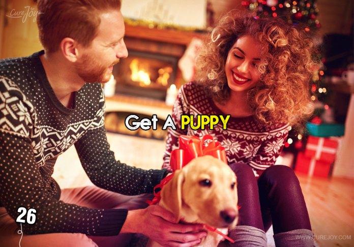 26-get-a-puppy