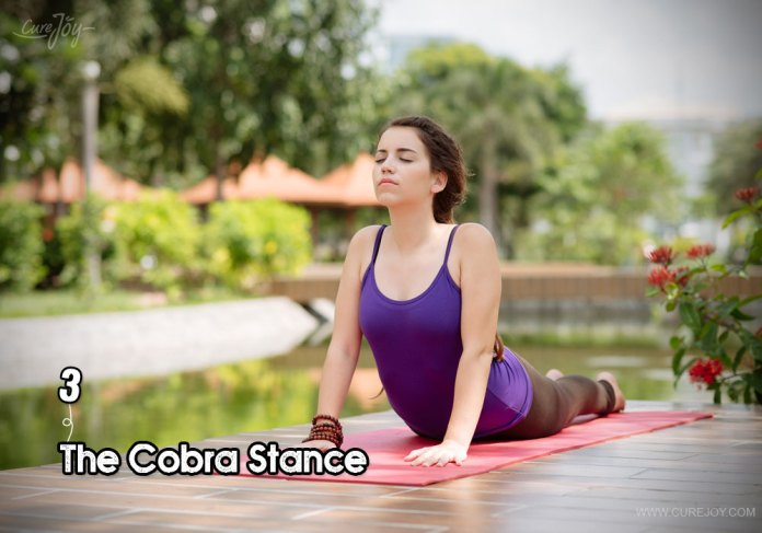 3-the-cobra-stance