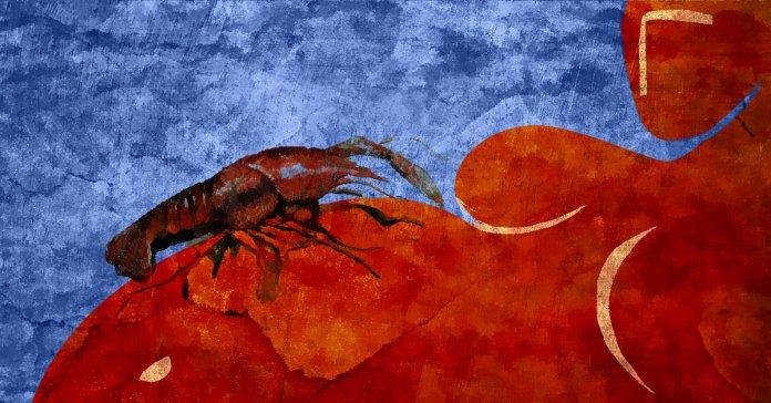 crawfish during pregnancy
