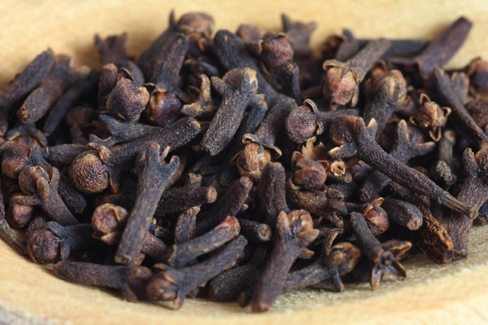 Clove - parasite killing herb