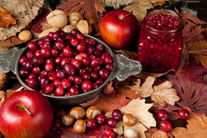 Cranberry: 9 Best Winter Fruits: Why Should You Eat!