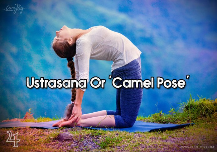 4-ustrasana-or-camel-pose