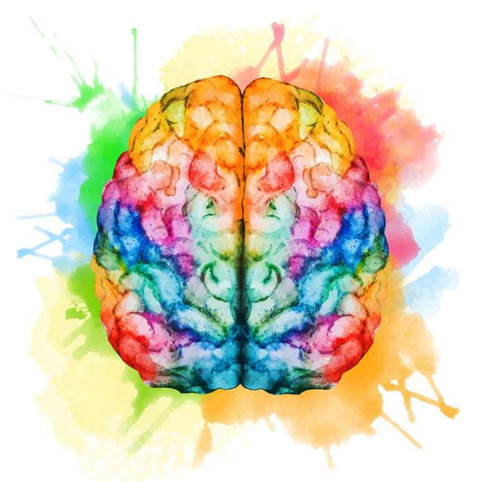 brain-health: How Meditation Changes The Brain And Body