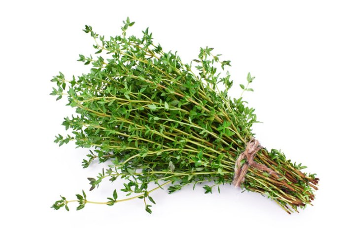 Thyme kills bad odor in hair due to its anti fungal properties
