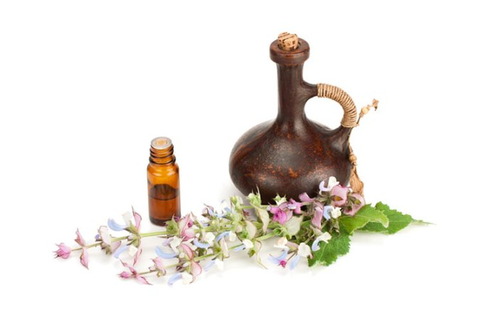 Clary Sage Oil:Best Combination Oils For Avocado Oil