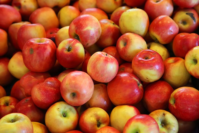 Apples: Top 10 Energy Boosting Superfoods During Pregnancy