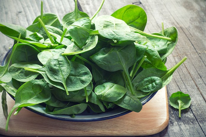 Spinach: Top 10 Energy Boosting Superfoods During Pregnancy