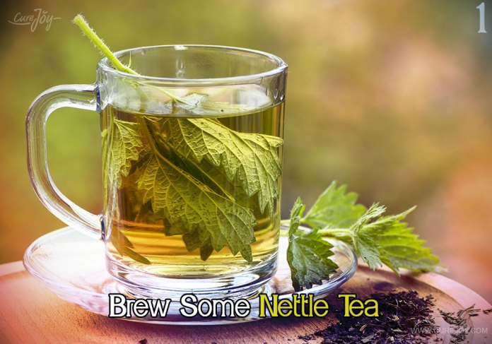 1-brew-some-nettle-tea