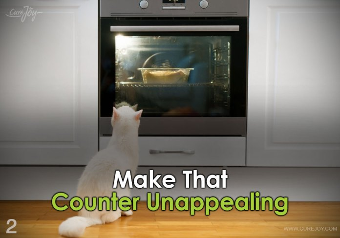 2-make-that-counter-unappealing