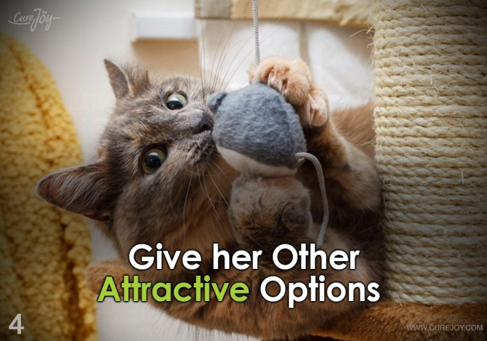 4-give-her-other