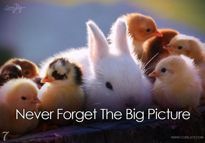 7-never-forget-the-big-picture