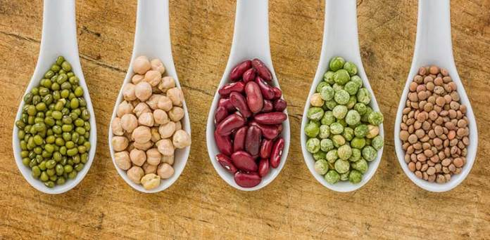 Beans Are Protein Source For Vegetarians