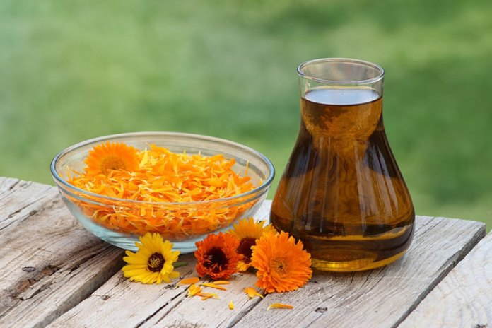 How To Make Calendula Infused Oils From Dried Herbs At Home