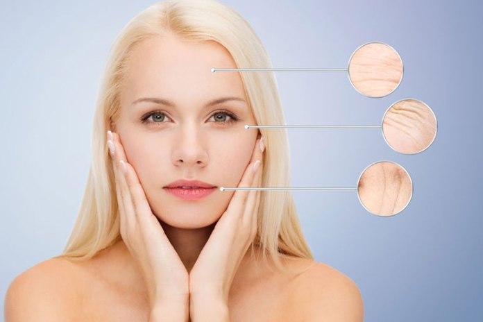 Sunscreen Reduces Photoaging