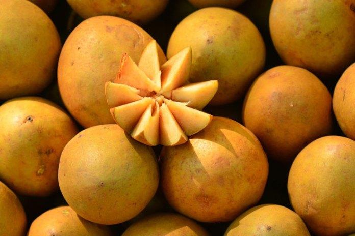 8 Health Benefits of Sapota Fruit You Should Know