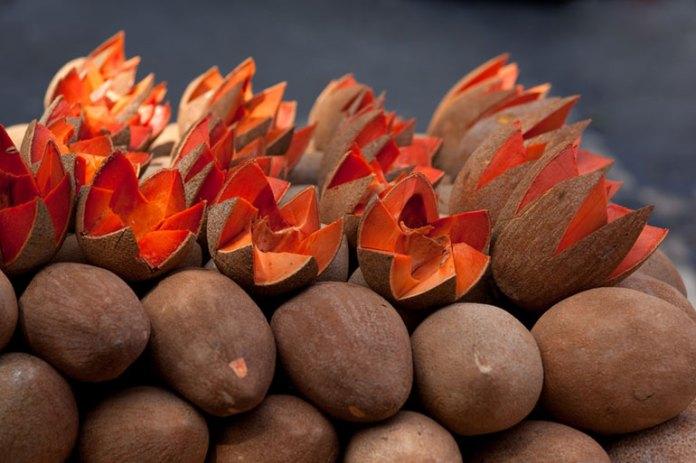 8 Health Benefits of Sapota Fruit You Should <!-- WP QUADS Content Ad Plugin v. 2.0.26 -- data-recalc-dims=