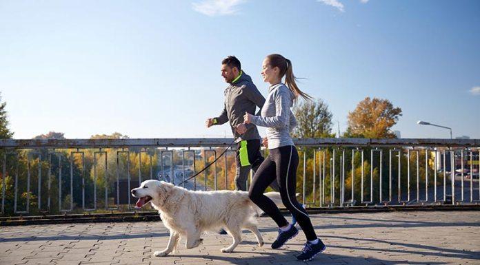 Running Induces Menstruation