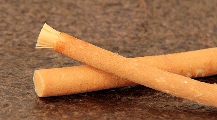 Miswak For Healthy Teeth And Gums