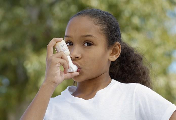 Mangosteen helps reduce symptoms of Asthma