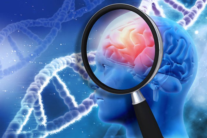 Hemp Oil Can Cure Brain Cancer