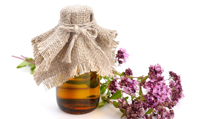 Oregano Essential Oil That Reduce Cellulite Naturally