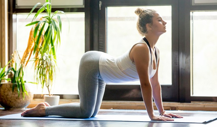 The Cat And Cow (Marjaryasana And Bitilasana)_Yoga Asanas For Upper, Middle, and Lower Back Pain Relief