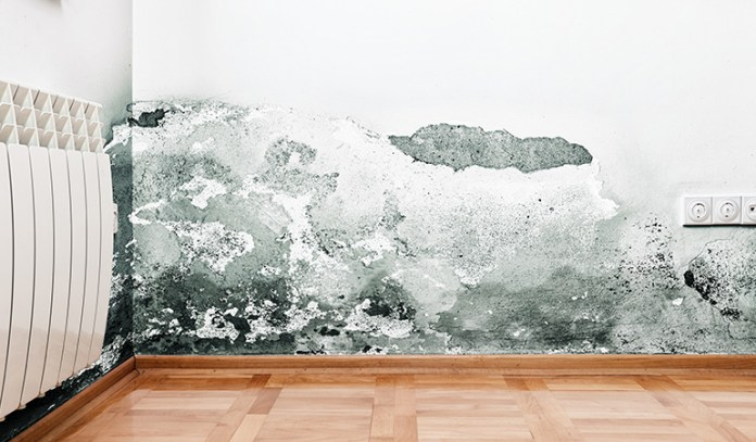 Toxin-mediated conditions_Effects Of Breathing Mold Or Mildew