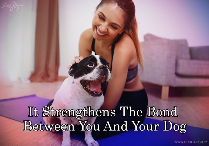 1-it-strengthens-the-bond-between-you-and-your-dog