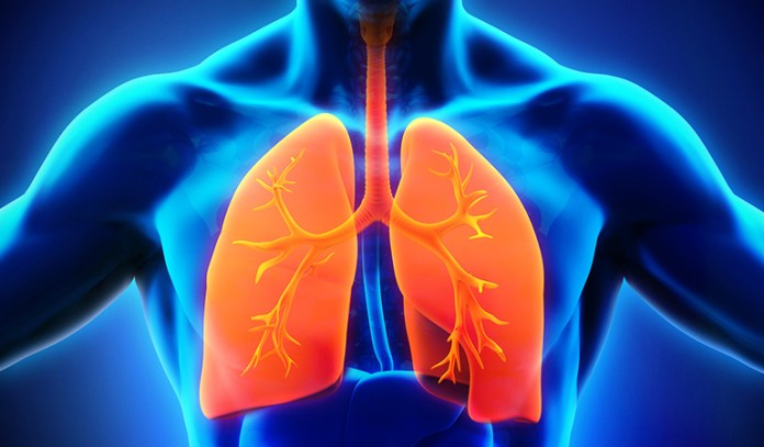 Smoke Negatively Affects The Respiratory Tract
