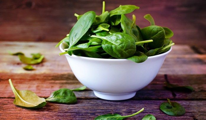 Folate Is Necessary For DNA Development