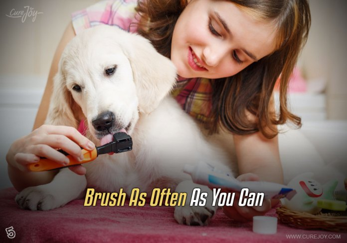 5-brush-as-often-as-you-can