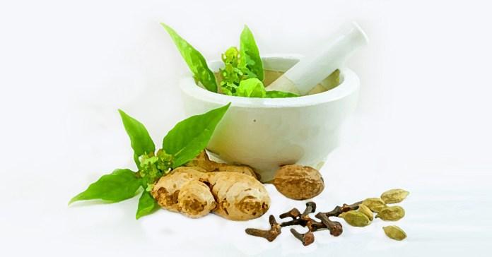 ways to prepare ayurvedic herbs