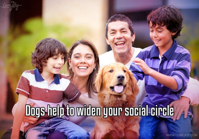 5-dogs-help-to-widen-your-social-circle