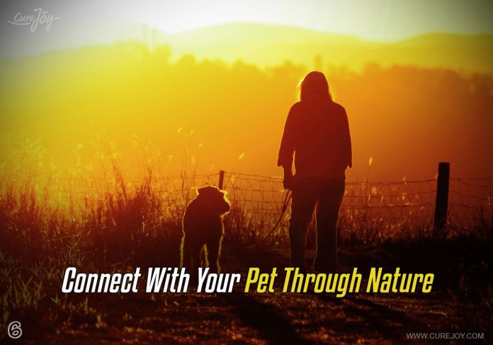 6-connect-with-your-pet-through-nature