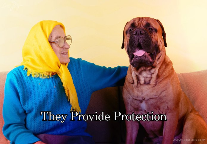 7-they-provide-protection