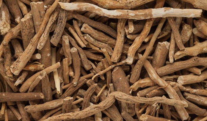 Ashwagandha treats Parkinson's by reducing inflammation and regulating dopamine levels.