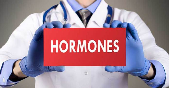 Cholesterol and healthy fats are important in hormone synthesis