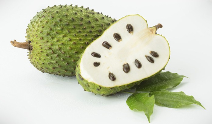 Eat soursop pulp for health benefits