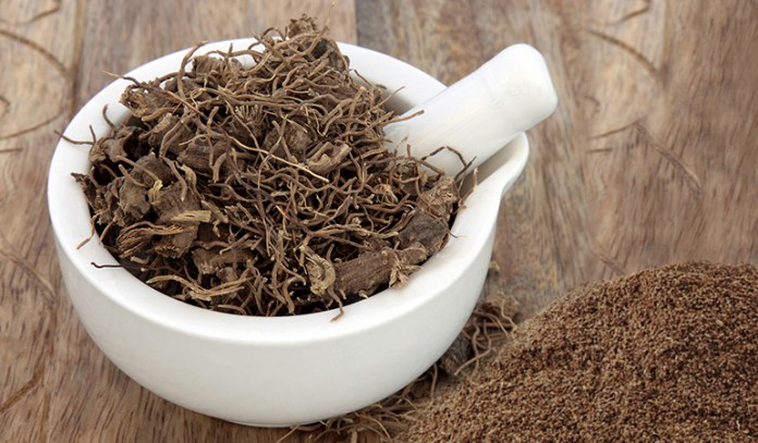 Black cohosh may be taken in pill dried root powder, or in tea form