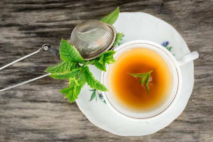 Peppermint Tea Reduces The Production Of Oil In Skin