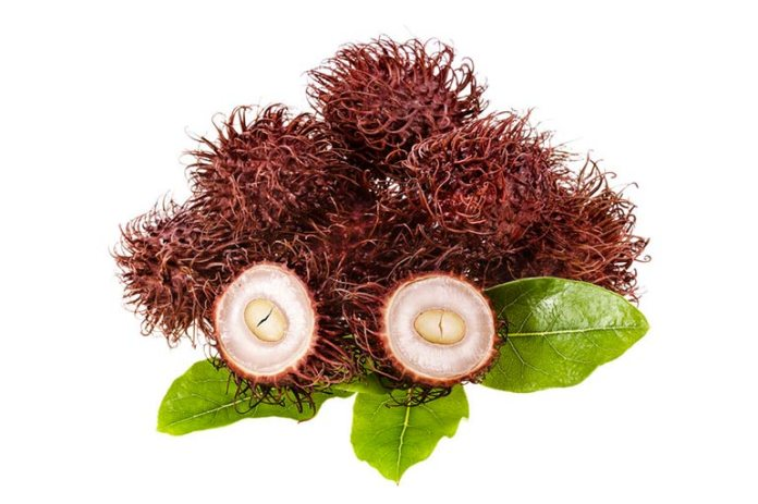 Rambutan seeds make for healthy snacks, <!-- WP QUADS Content Ad Plugin v. 2.0.26 -- data-recalc-dims=