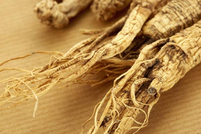 Homeopathic Remedies For Alopecia Barbae: Ginseng Root