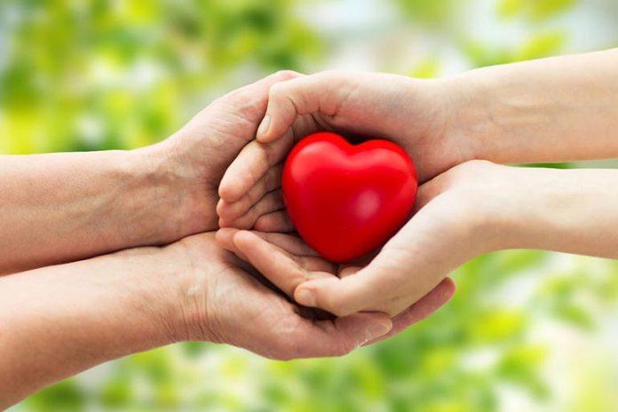 Brahmi helps protect heart health
