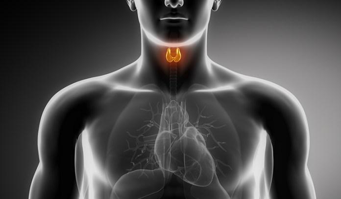 Benefits Of Sarvangasana Thyroid Function