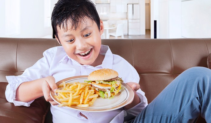 effects of obesity on brain obese teenager