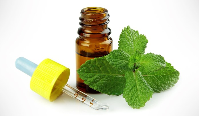 Peppermint oil- used in aromatherapy for weight loss, suppresses appetite.