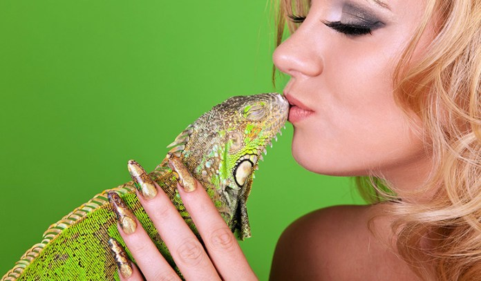 Reptiles can cause allergies