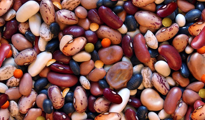 Fiber and proteins take longer to be broken down, hence stimulate your metabolism to work harder.
