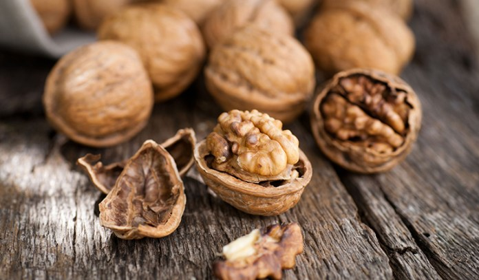 Walnuts Boost Your Brain Health