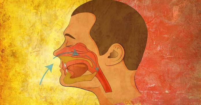 Which Is Better: Breathing From Your Mouth Or Nose?